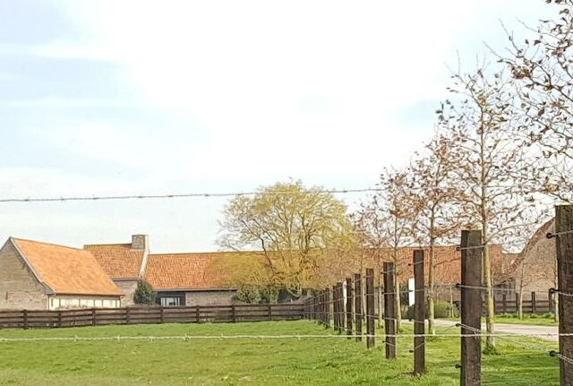 Hoeve Schellevliet I Stretched.be